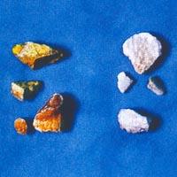 중국고대의 9가지 독약